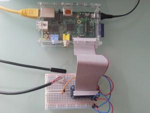 Raspberry Pi mit angeschlossenem 1-Wire DS18B20 Temperatursensor